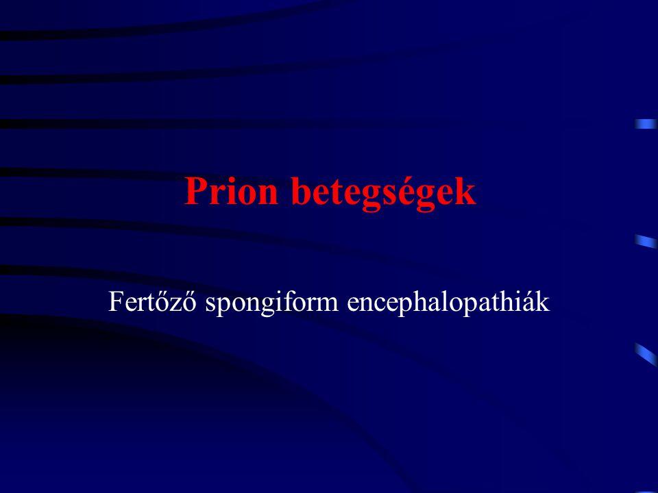 Fertőző spongiform encephalopathiák