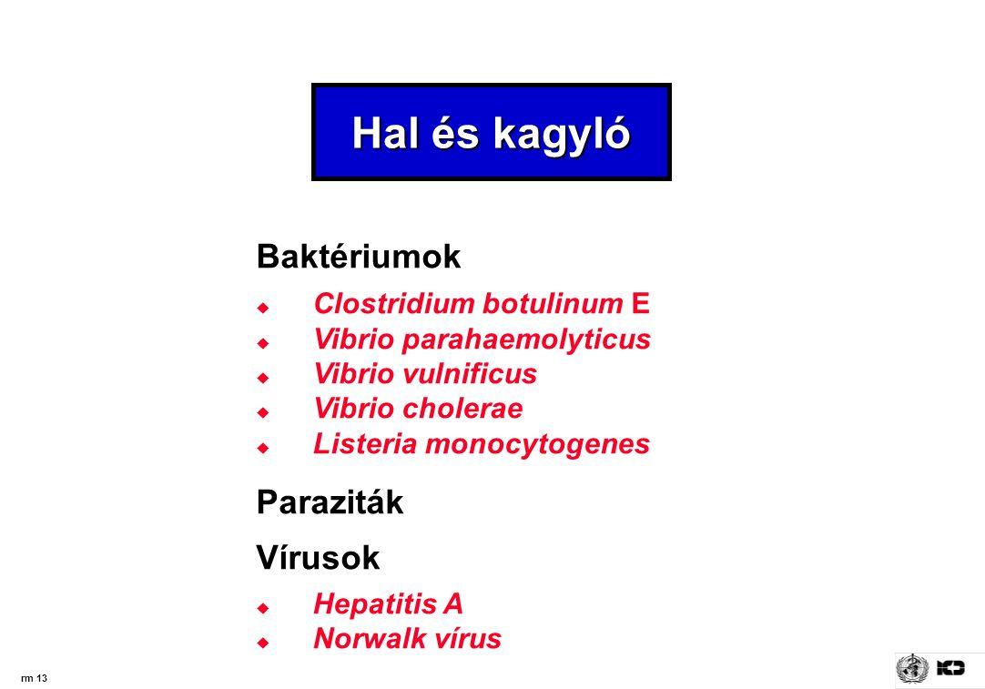 Hal és kagyló Baktériumok Paraziták Vírusok Clostridium botulinum E