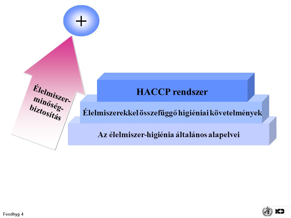 + HACCP rendszer Élelmiszer- minőség-biztosítás