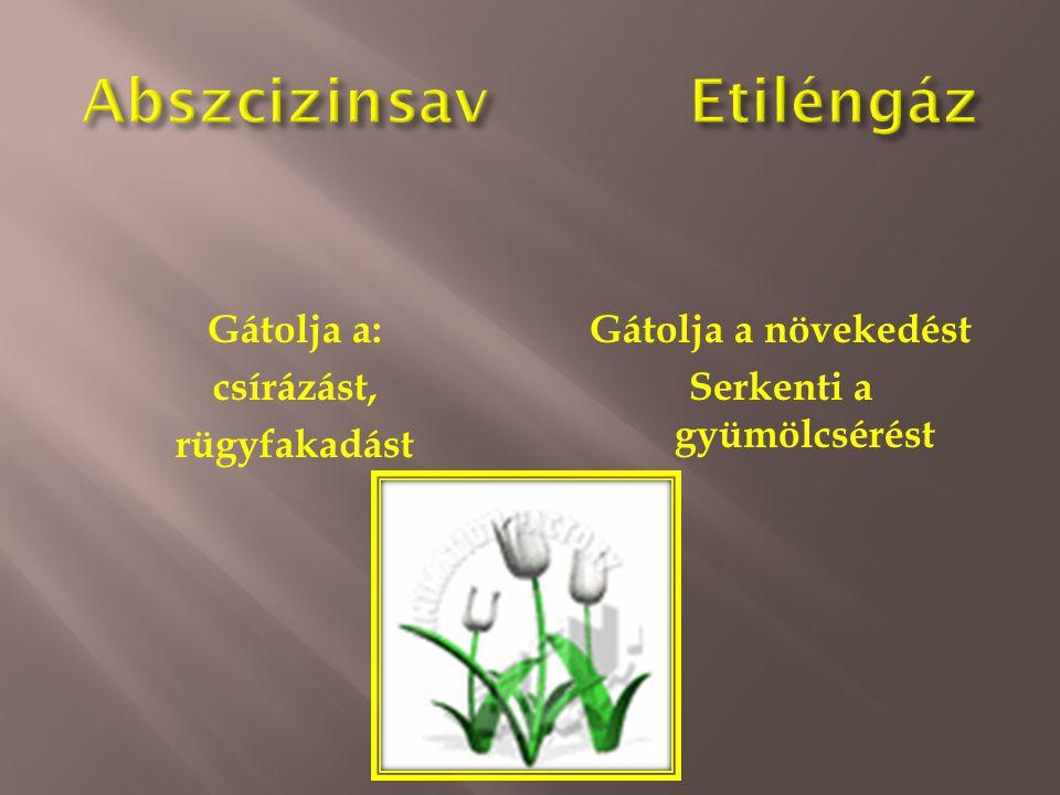 Abszcizinsav Etiléngáz