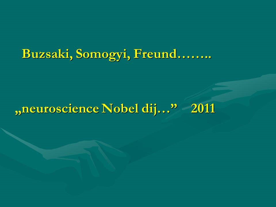 Buzsaki, Somogyi, Freund……..