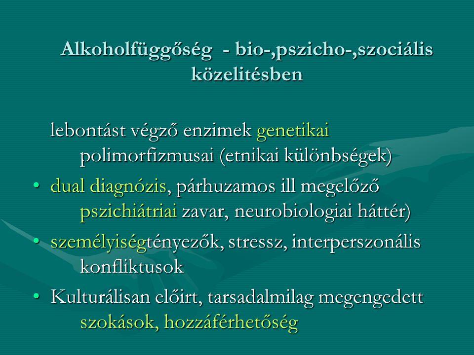 Alkoholfüggőség - bio-,pszicho-,szociális közelitésben