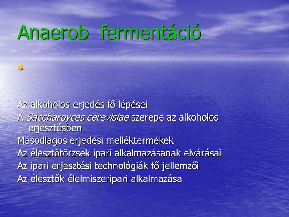 Anaerob fermentáció Az alkoholos erjedés fő lépései