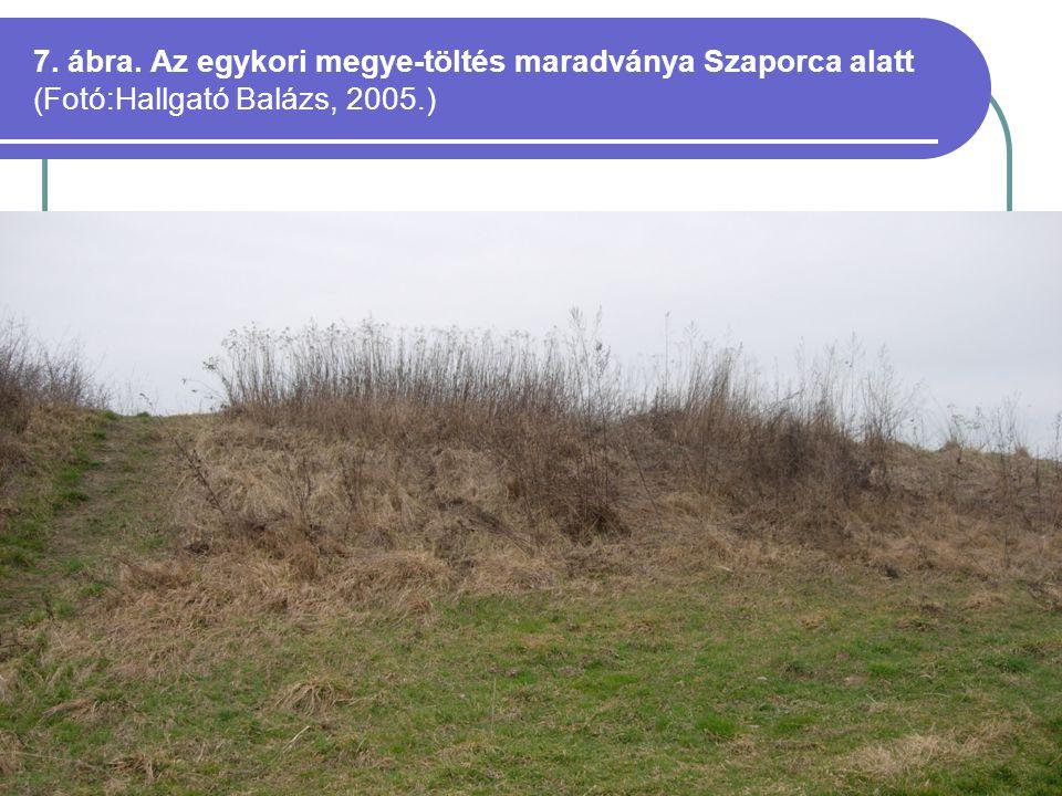 7. ábra. Az egykori megye-töltés maradványa Szaporca alatt (Fotó:Hallgató Balázs, 2005.)