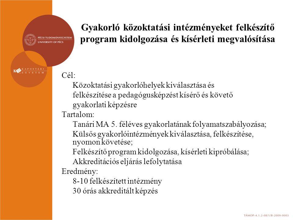 Gyakorló közoktatási intézményeket felkészítő program kidolgozása és kísérleti megvalósítása