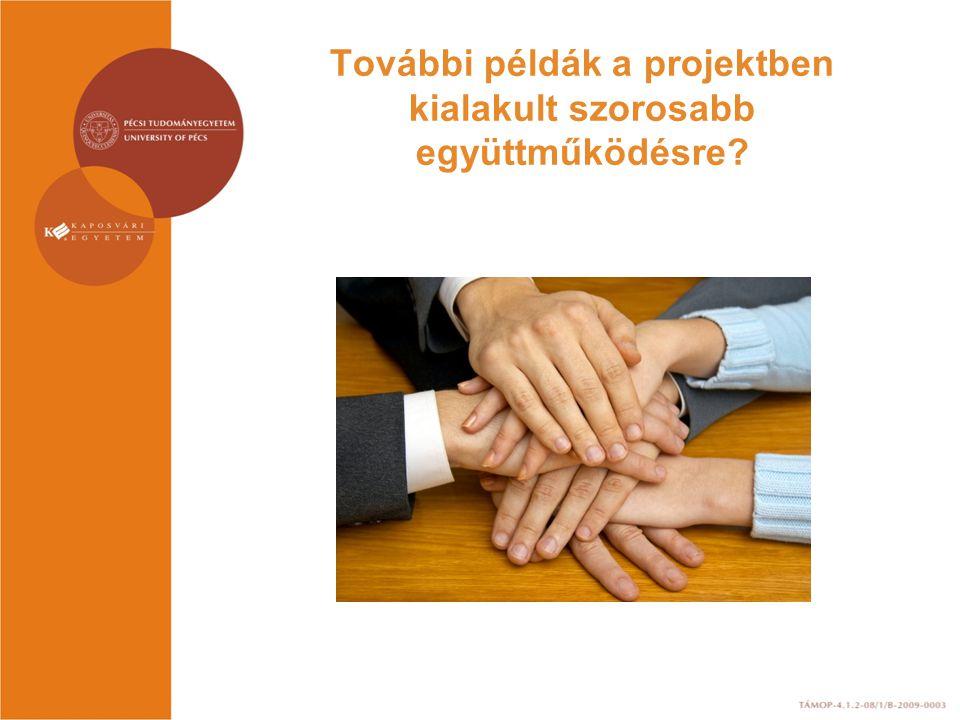 További példák a projektben kialakult szorosabb együttműködésre