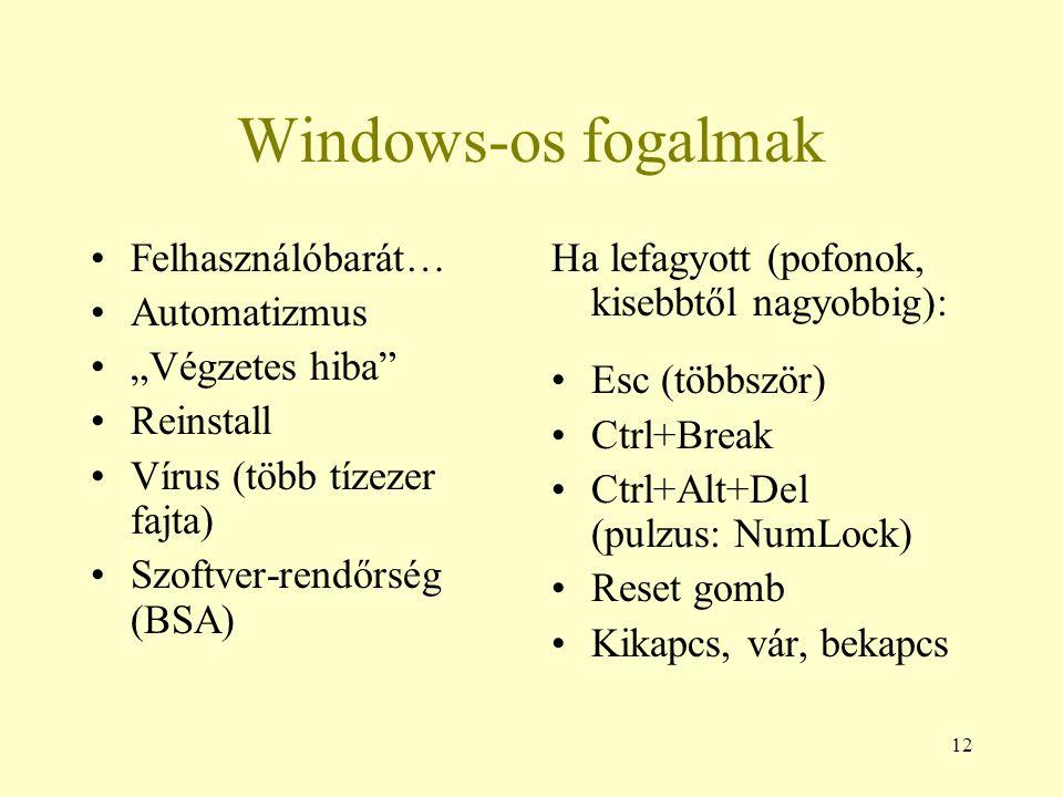 """Windows-os fogalmak Felhasználóbarát… Automatizmus """"Végzetes hiba"""