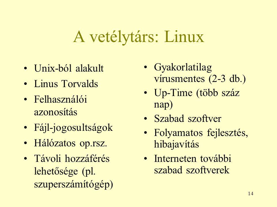 A vetélytárs: Linux Unix-ból alakult Linus Torvalds