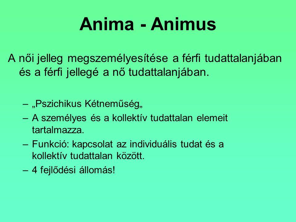 Anima - Animus A női jelleg megszemélyesítése a férfi tudattalanjában és a férfi jellegé a nő tudattalanjában.