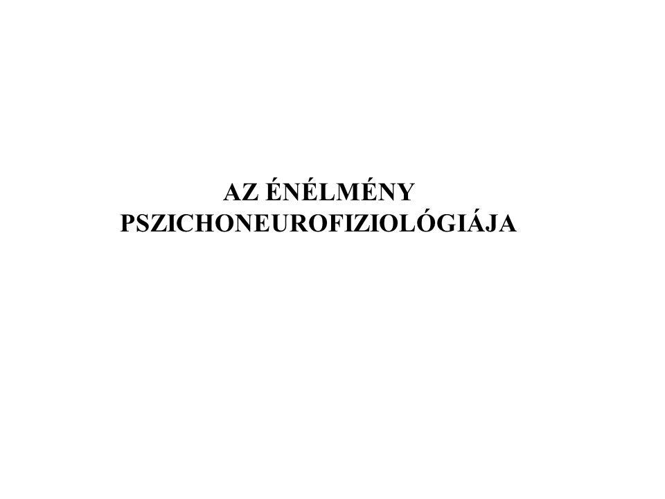 AZ ÉNÉLMÉNY PSZICHONEUROFIZIOLÓGIÁJA