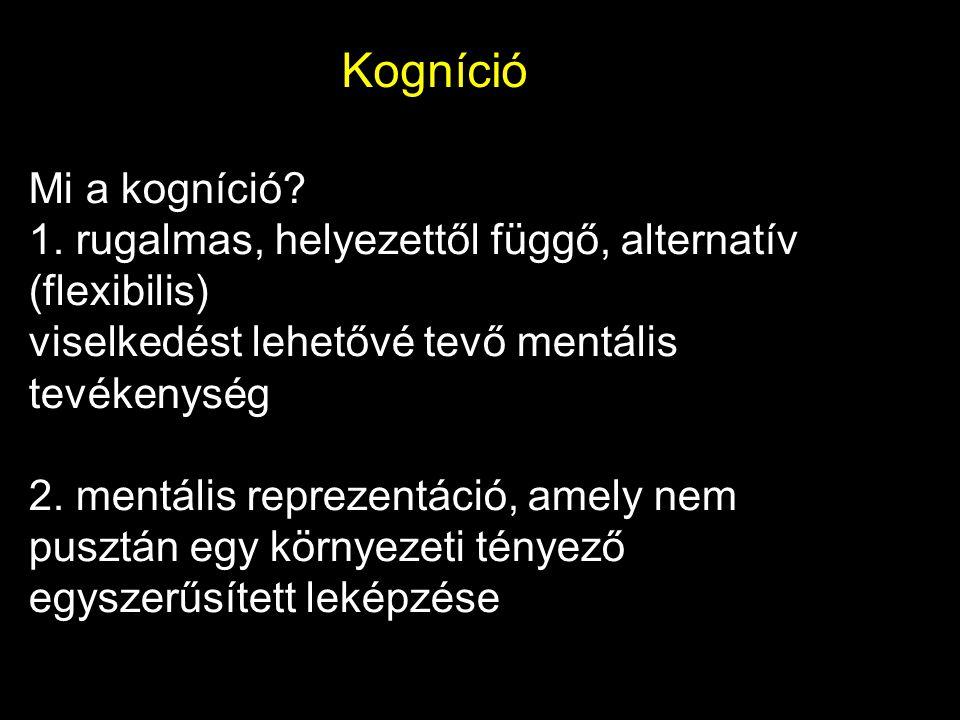 Kogníció Mi a kogníció 1. rugalmas, helyezettől függő, alternatív (flexibilis) viselkedést lehetővé tevő mentális tevékenység.