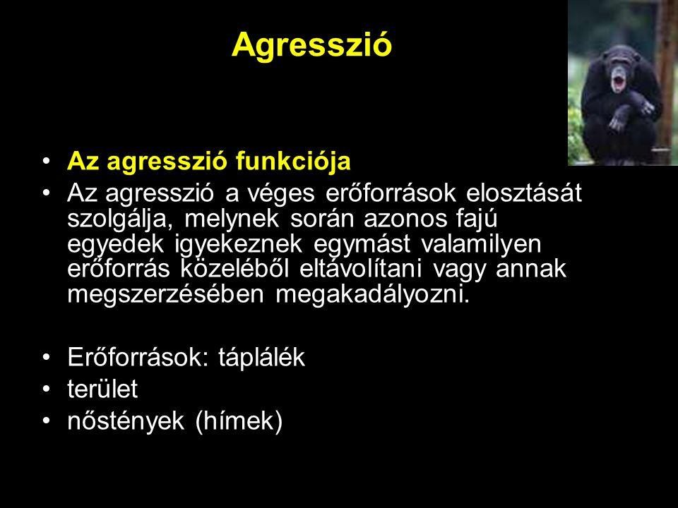 Agresszió Az agresszió funkciója