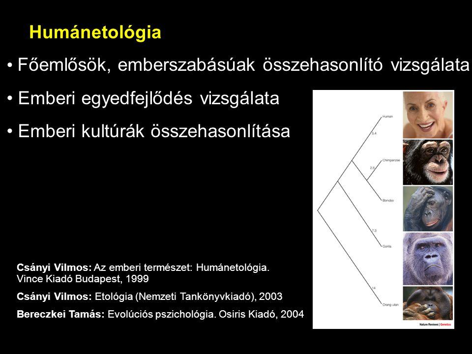 Főemlősök, emberszabásúak összehasonlító vizsgálata