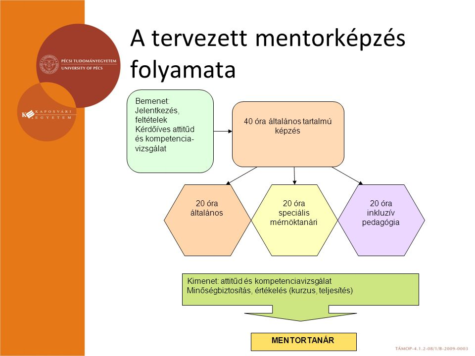 A tervezett mentorképzés folyamata