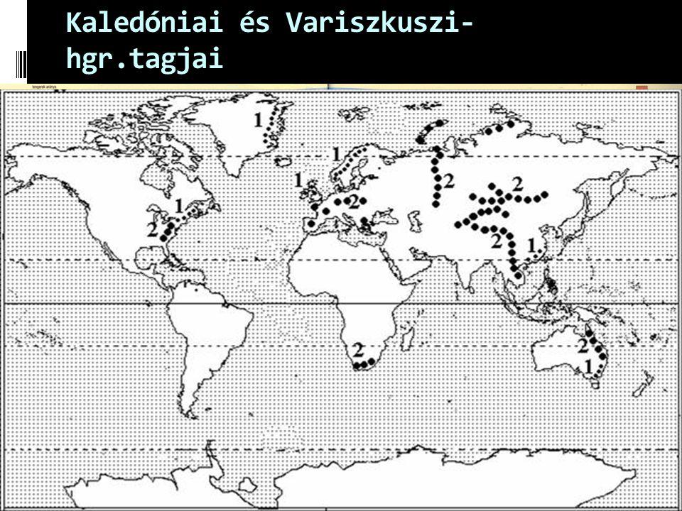 Kaledóniai és Variszkuszi-hgr.tagjai