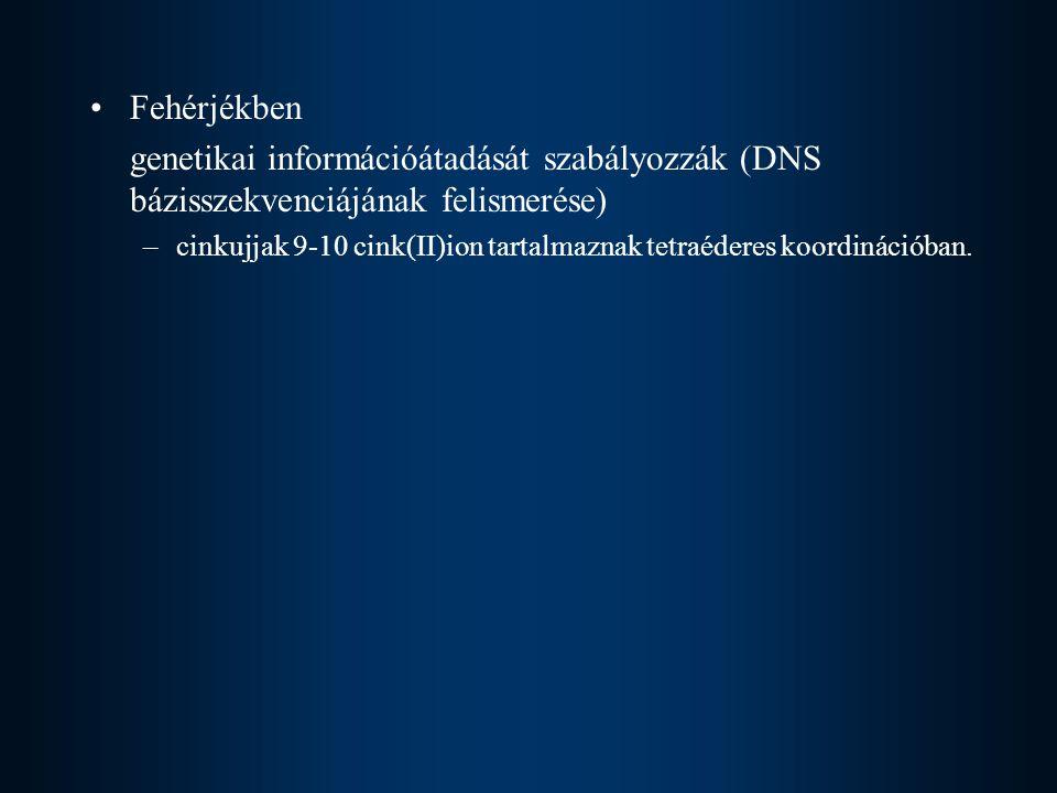 Fehérjékben genetikai információátadását szabályozzák (DNS bázisszekvenciájának felismerése)