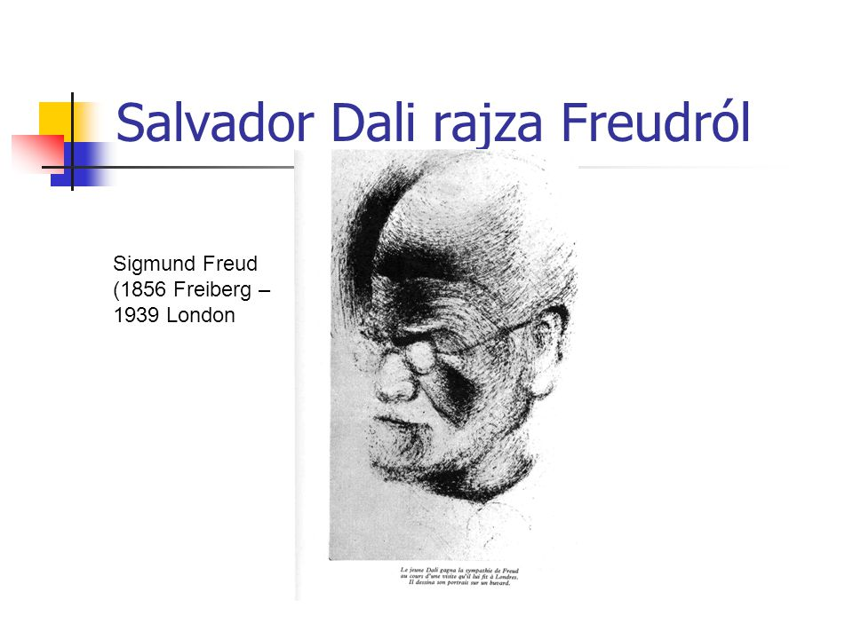 Salvador Dali rajza Freudról