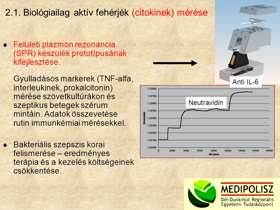 2.1. Biológiailag aktív fehérjék (citokinek) mérése