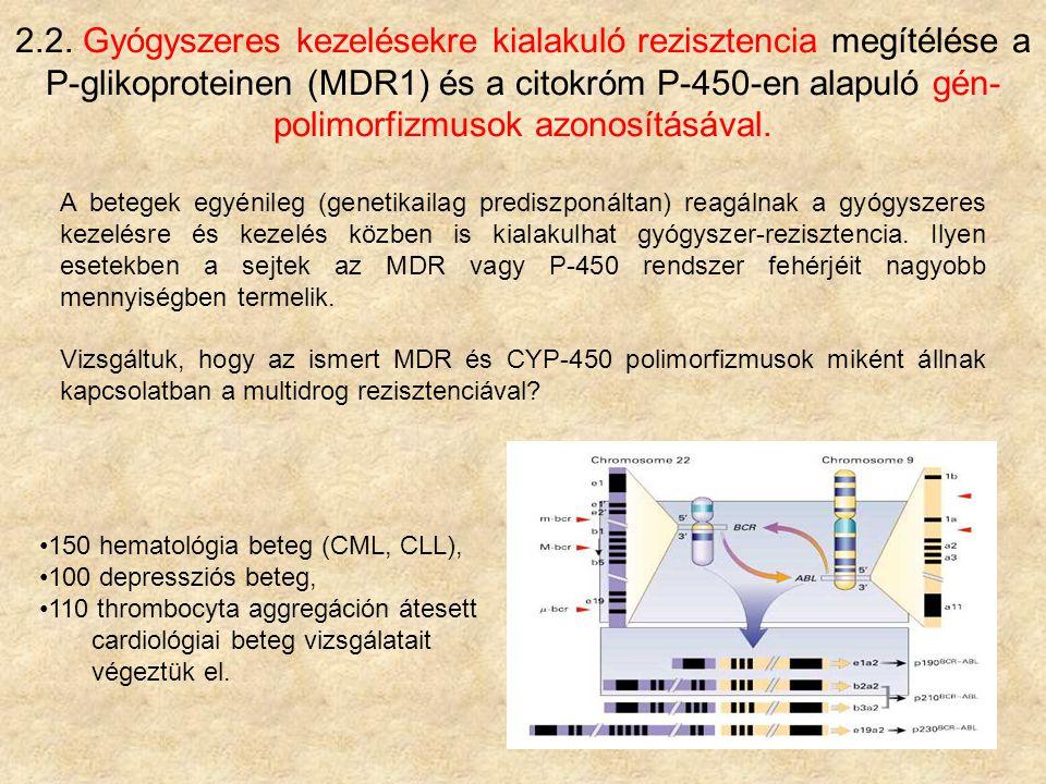 2.2. Gyógyszeres kezelésekre kialakuló rezisztencia megítélése a P-glikoproteinen (MDR1) és a citokróm P-450-en alapuló gén-polimorfizmusok azonosításával.