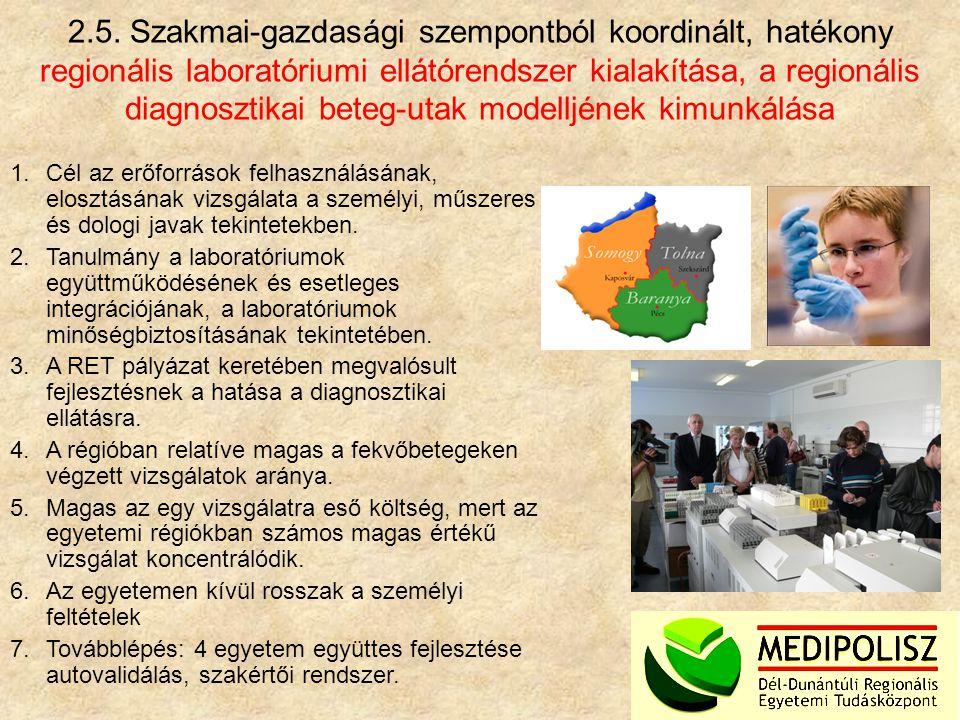 2.5. Szakmai-gazdasági szempontból koordinált, hatékony regionális laboratóriumi ellátórendszer kialakítása, a regionális diagnosztikai beteg-utak modelljének kimunkálása