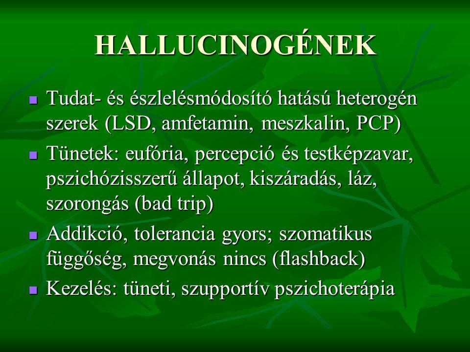 HALLUCINOGÉNEK Tudat- és észlelésmódosító hatású heterogén szerek (LSD, amfetamin, meszkalin, PCP)