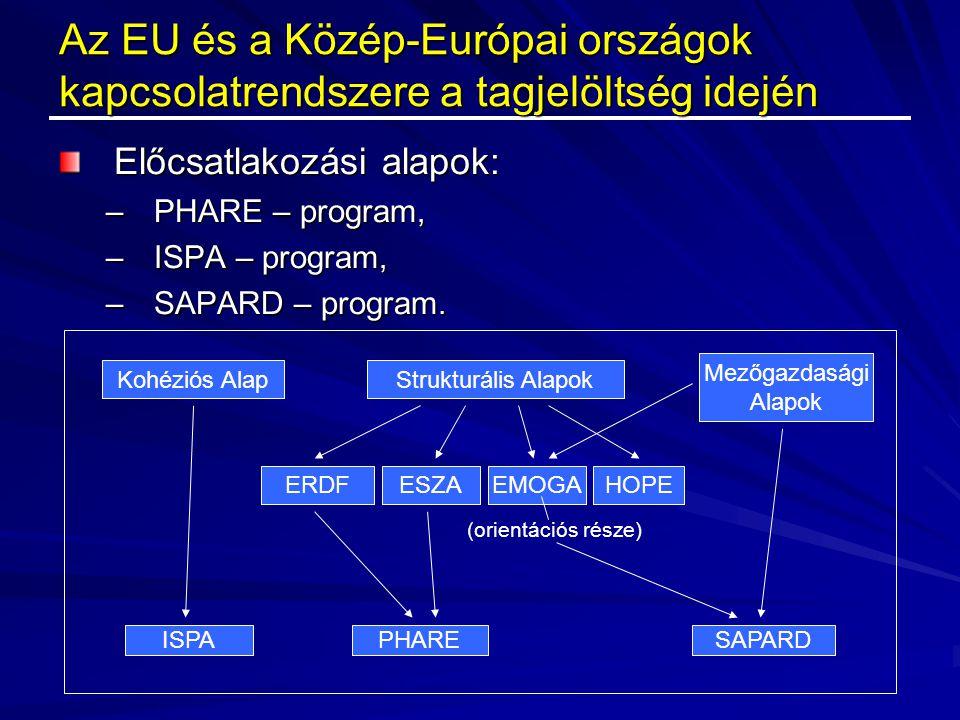 Az EU és a Közép-Európai országok kapcsolatrendszere a tagjelöltség idején