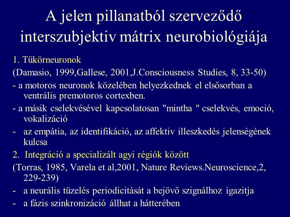 A jelen pillanatból szerveződő interszubjektiv mátrix neurobiológiája