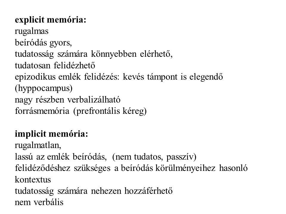 explicit memória: rugalmas. beíródás gyors, tudatosság számára könnyebben elérhető, tudatosan felidézhető.