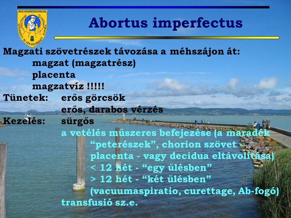 Abortus imperfectus