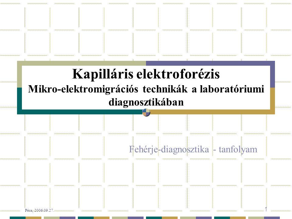 Kapilláris elektroforézis Mikro-elektromigrációs technikák a laboratóriumi diagnosztikában