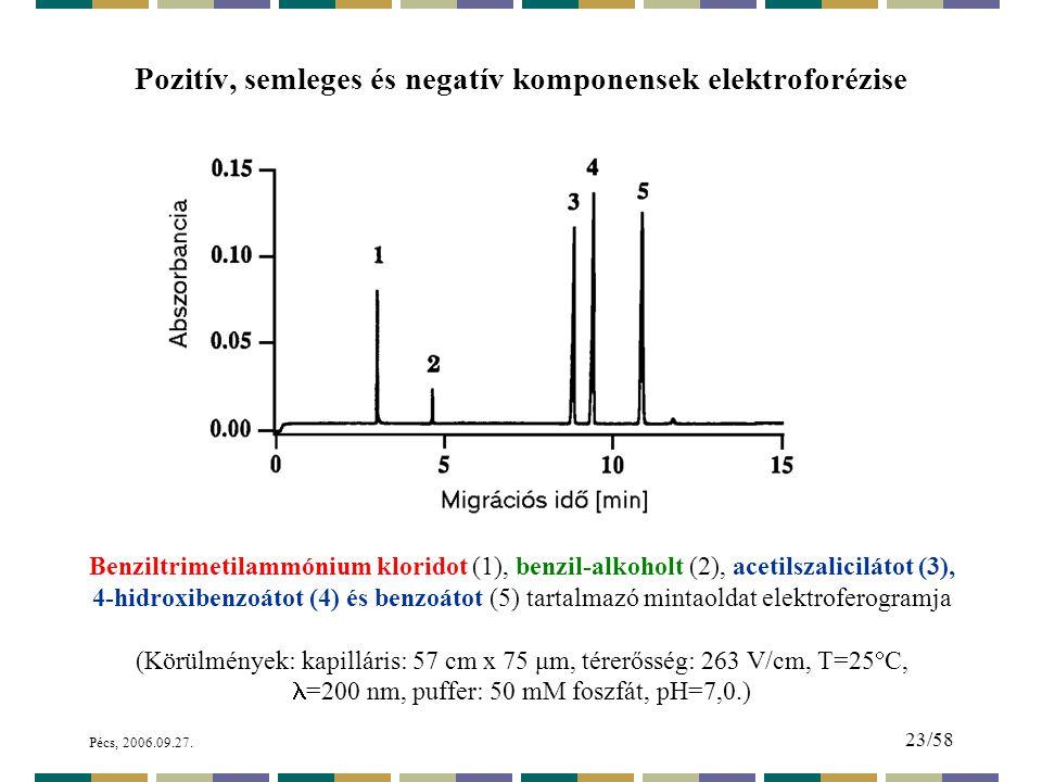 Pozitív, semleges és negatív komponensek elektroforézise