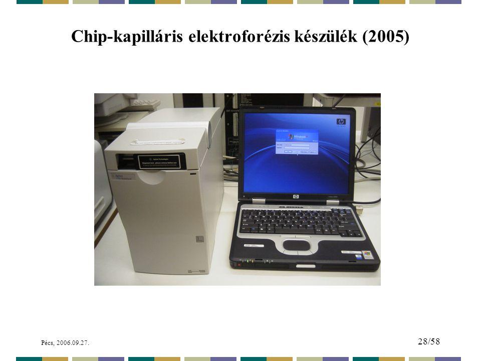 Chip-kapilláris elektroforézis készülék (2005)