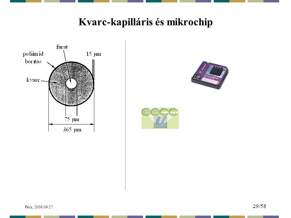 Kvarc-kapilláris és mikrochip