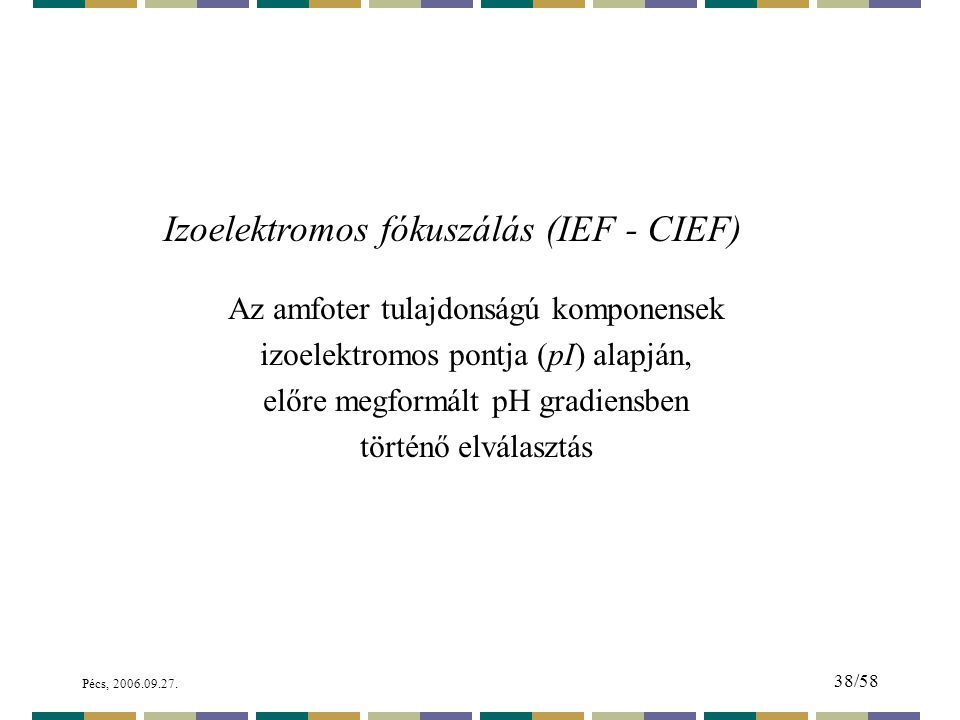 Izoelektromos fókuszálás (IEF - CIEF)