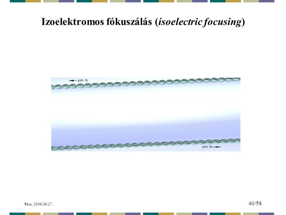 Izoelektromos fókuszálás (isoelectric focusing)