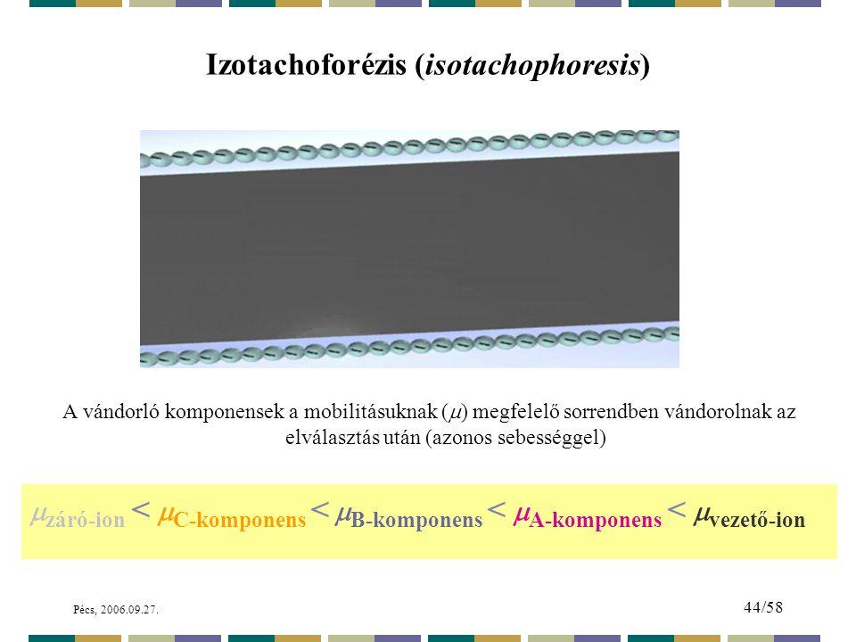 Izotachoforézis (isotachophoresis)