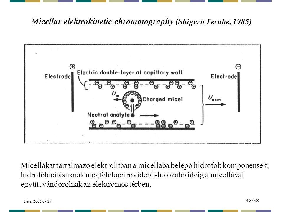 Micellar elektrokinetic chromatography (Shigeru Terabe, 1985)