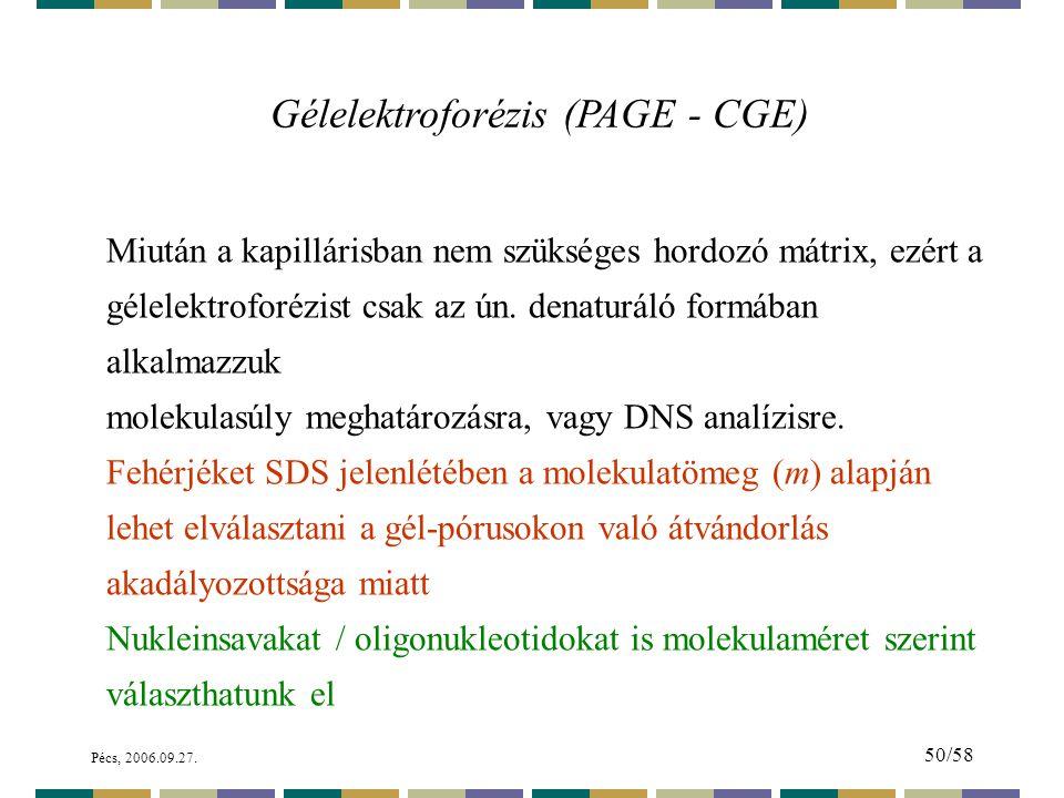 Gélelektroforézis (PAGE - CGE)