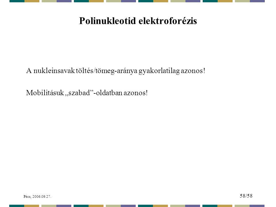 Polinukleotid elektroforézis