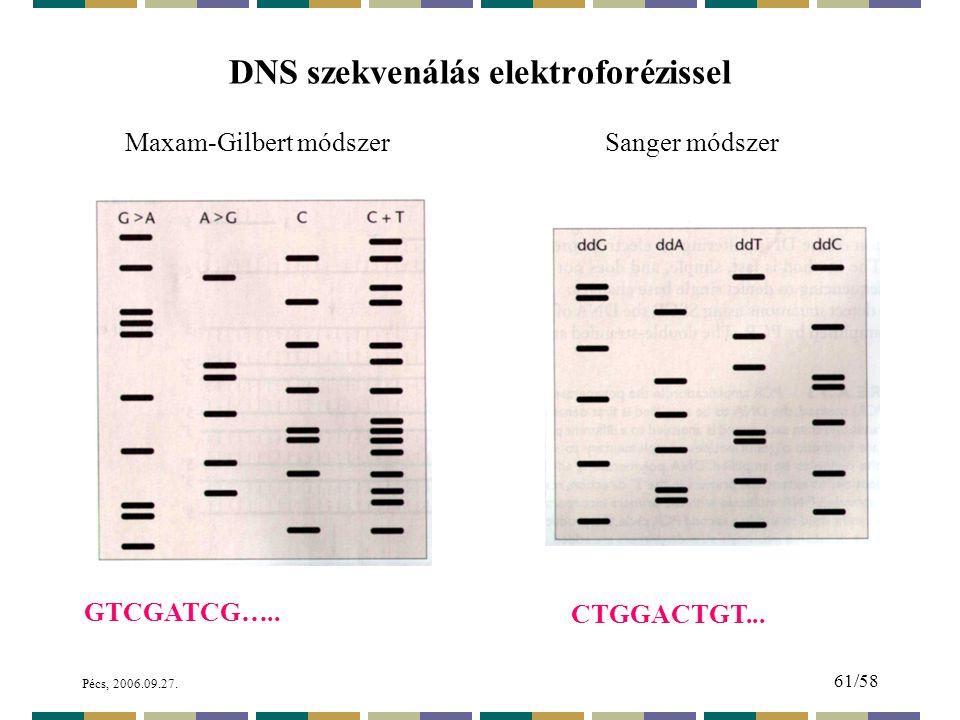 DNS szekvenálás elektroforézissel
