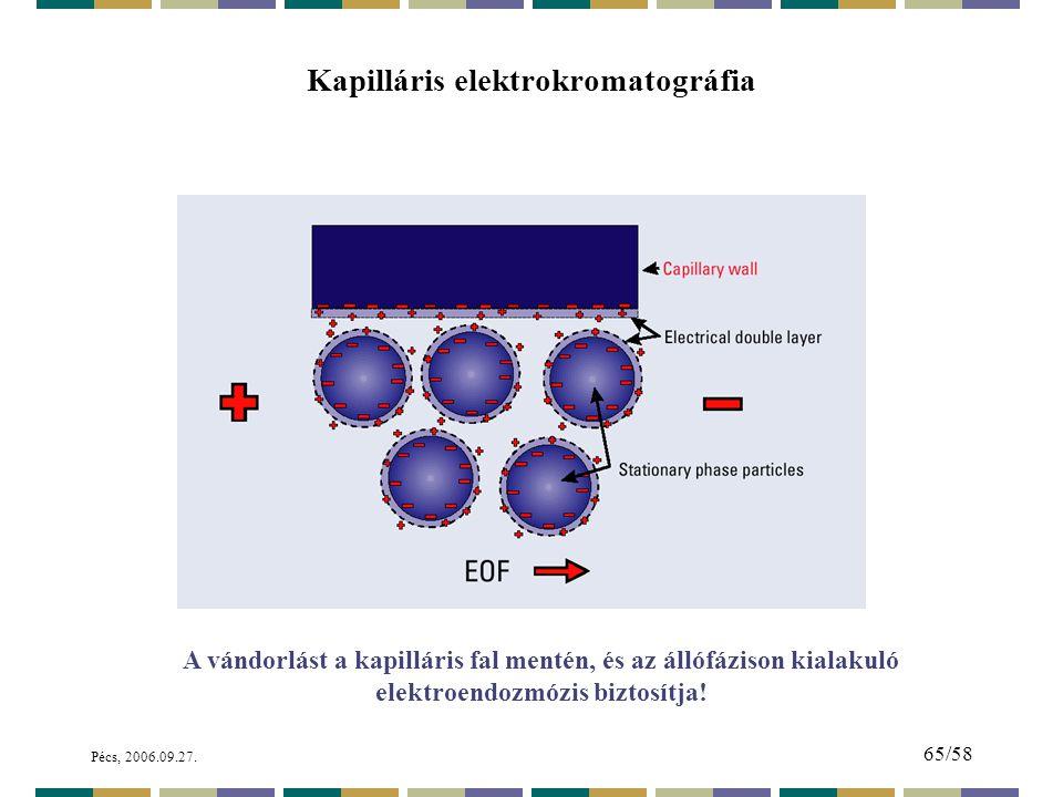 Kapilláris elektrokromatográfia