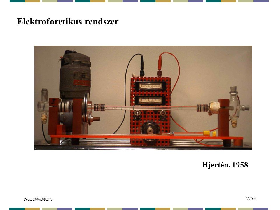 Elektroforetikus rendszer