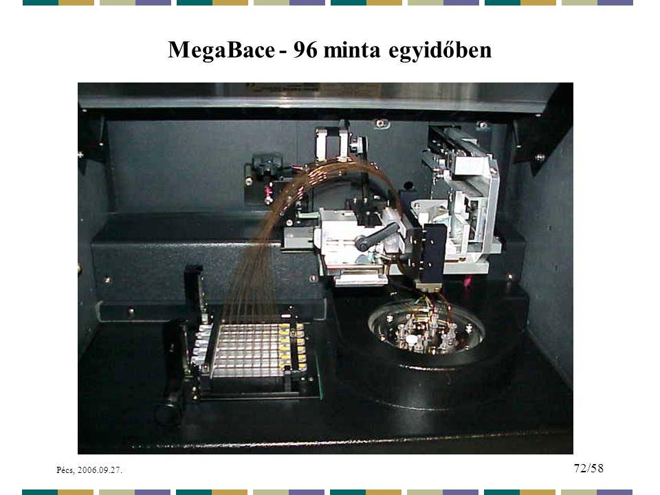 MegaBace - 96 minta egyidőben
