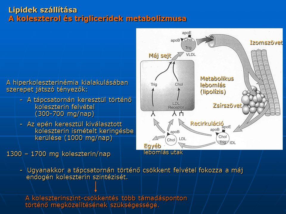 Lipidek szállítása A koleszterol és trigliceridek metabolizmusa