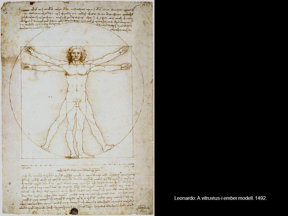 Leonardo: A vitruvius-i ember modell. 1492.