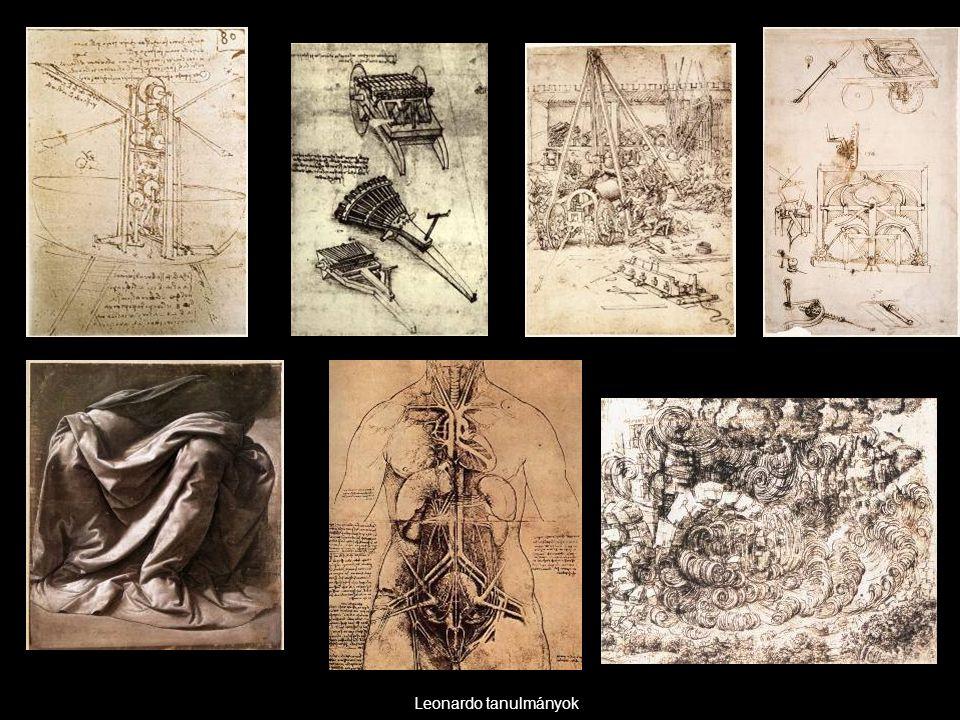 Leonardo tanulmányok