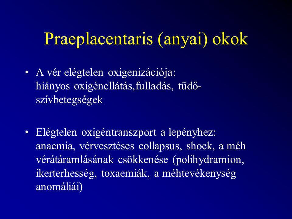 Praeplacentaris (anyai) okok