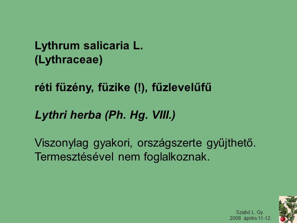 réti füzény, füzike (!), fűzlevelűfű Lythri herba (Ph. Hg. VIII.)