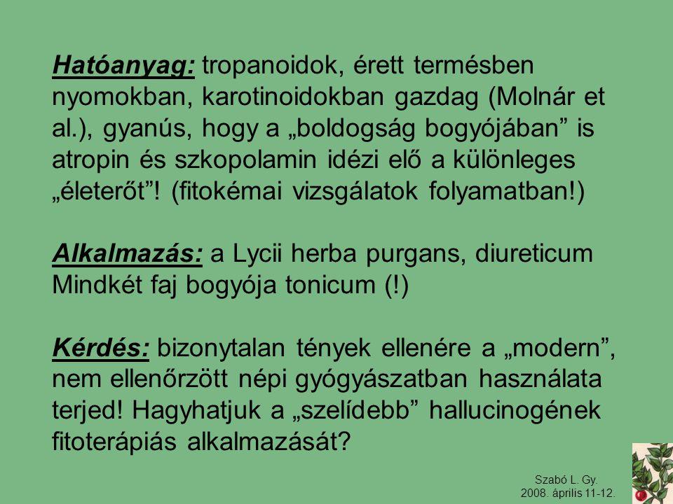 Alkalmazás: a Lycii herba purgans, diureticum