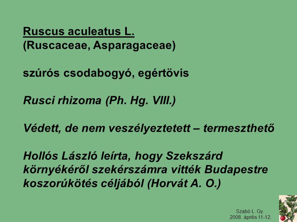 (Ruscaceae, Asparagaceae) szúrós csodabogyó, egértövis